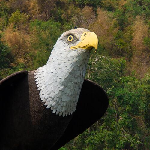 greifvolelatrappe-vogelabwehr
