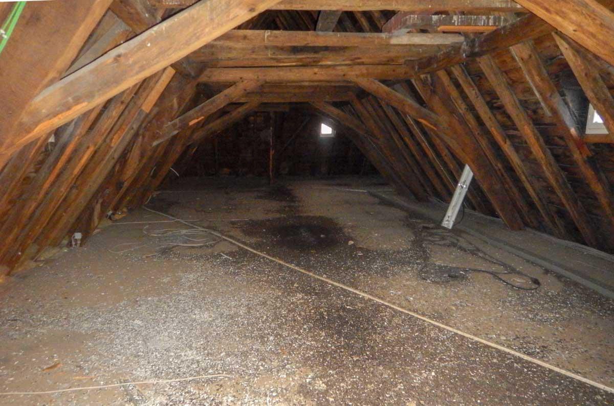 Dachboden mit Taubenkot